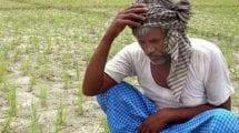 शेतकरी चिंताग्रस्त