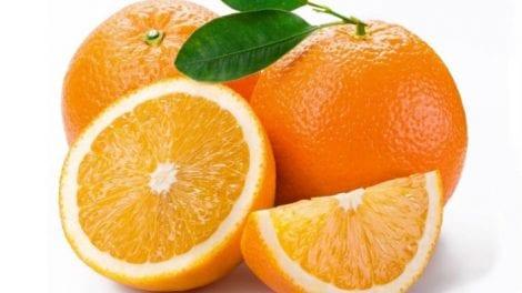 संत्री