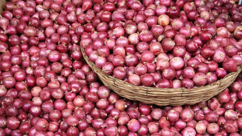 Onion-prices