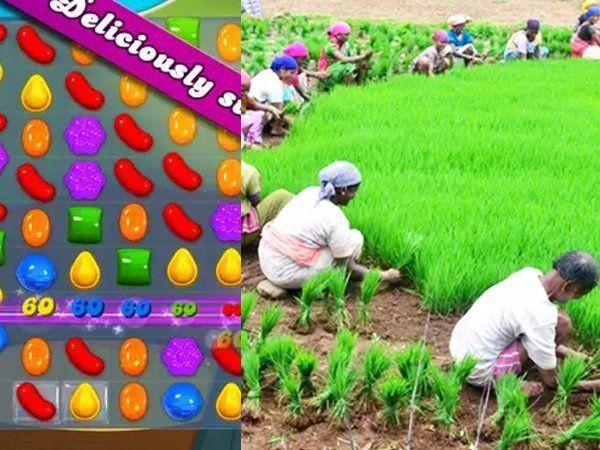 शेतकरी आणि कॅन्डी क्रश