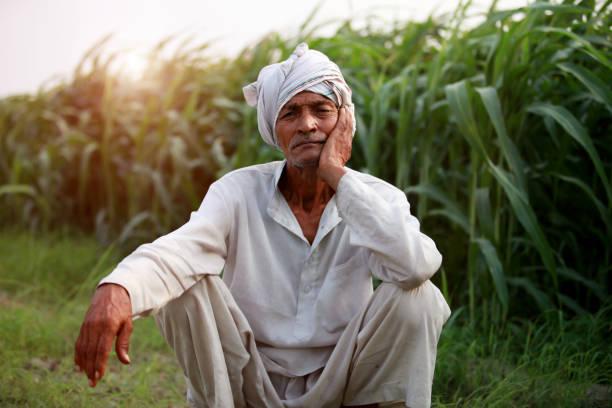 शेतकऱ्यांच्या नजरा आता भरपाईकडे